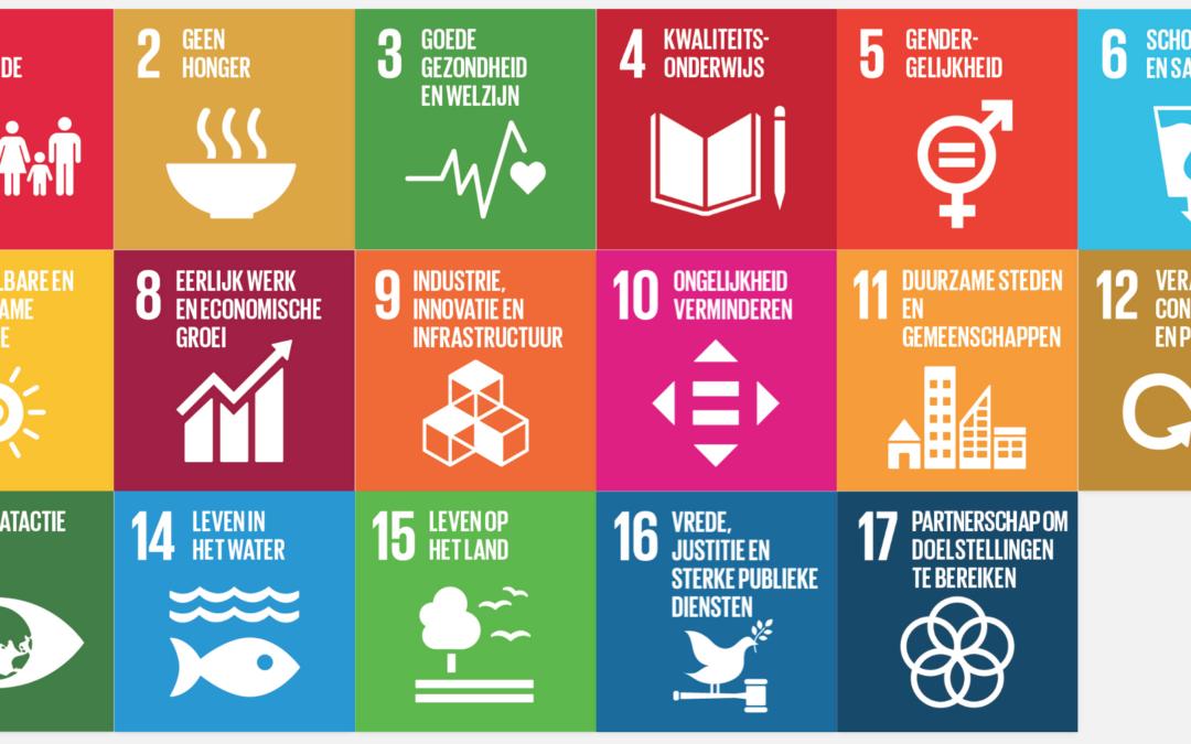 Wat zijn SDG's